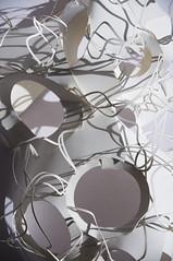 07_Princeton_SoA_Fall15_Baurmann_IDouglas_Paper_model