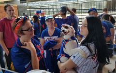 Bark in the Park at Citi Field