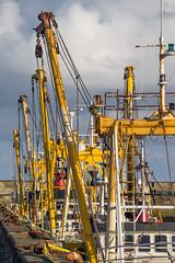 Beam Trawlers
