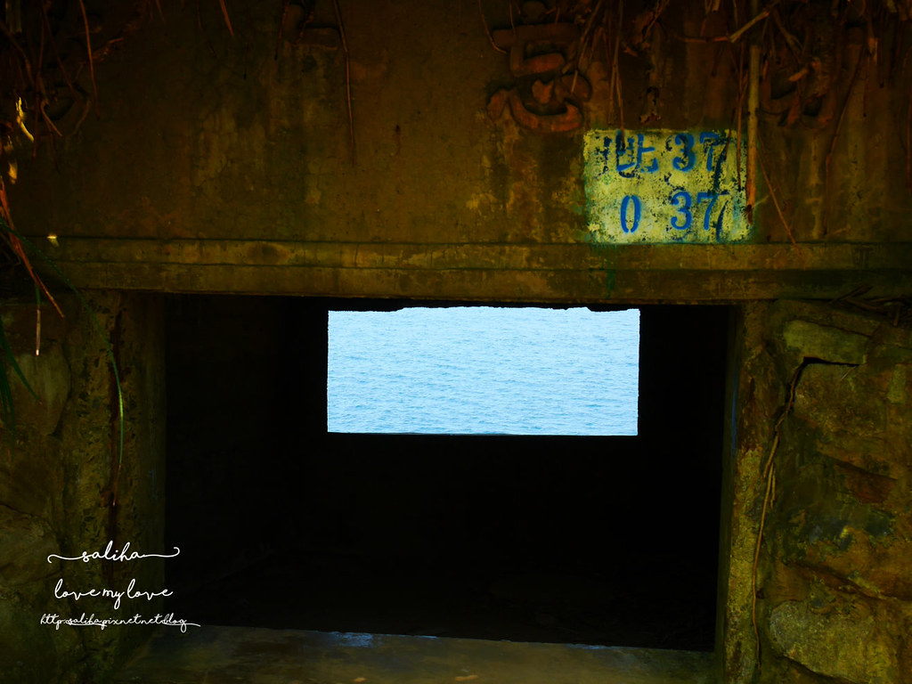 新北台北金山北海岸旅遊行程推薦水尾漁港神秘海岸 (1)