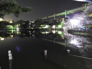 千葉公園綿打池 夜桜ライトアップ19 モノレール軌道