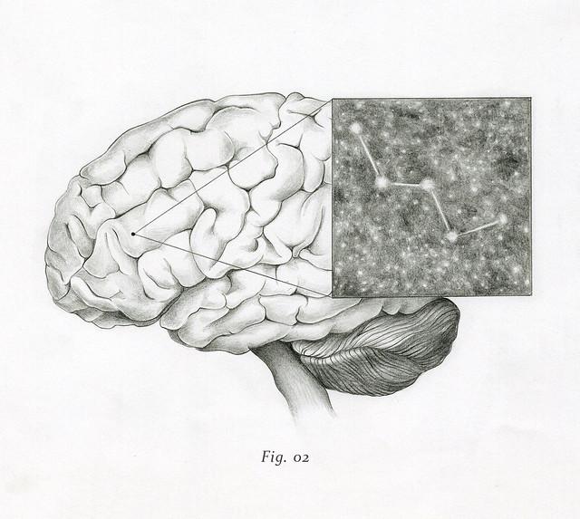Fig. 02 - Lucie Salgado
