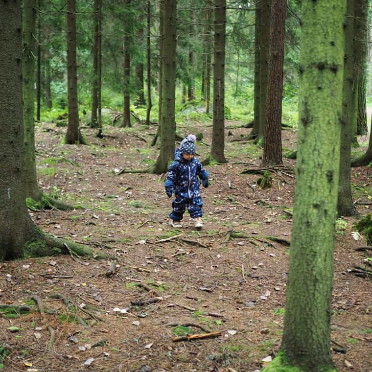 metsässä6
