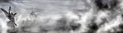 Professional, Creative, Service, professionalcreativeservice.com, weddings, weddings-websites, weddingphotography,photography, newengland, newhampshire, nashua, angel, rodriguez, angel rodriguez, logo, design, weddings-websites.com, pro-vok, boston, massa