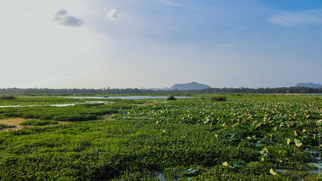 24.06-Tissamaharama-Sri-Lanka-canon-1500px-016