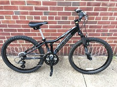 """24"""" wheel Raleigh MTN Scout - $125"""