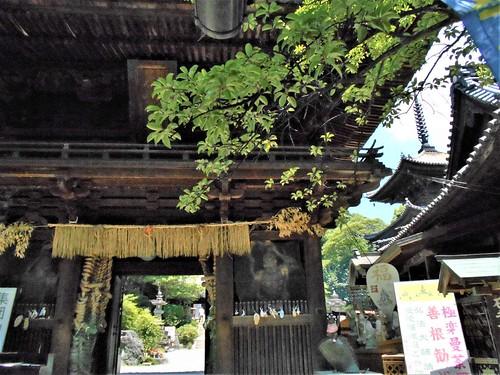 jp-matsuyama-Ishite-temple (24)