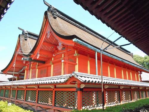 jp-matsuyama-Isaniwa-sanctuaire (3)