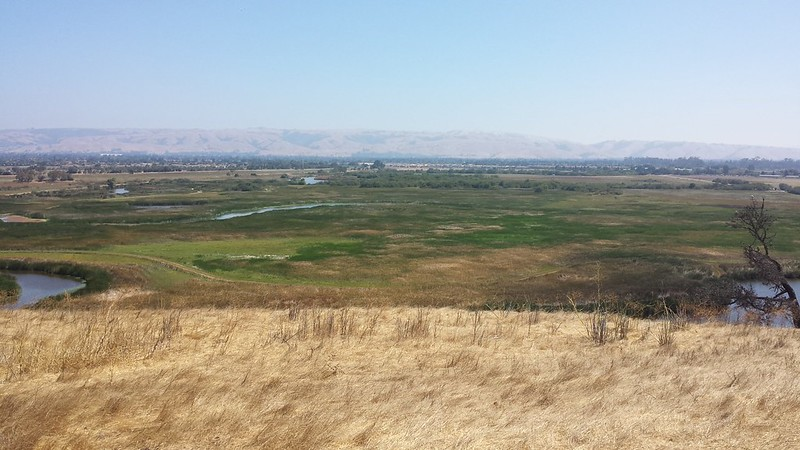 Hilltop view from Coyote Hills Park