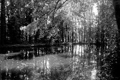 Pièce d'eau du Tertre - Photo of Saint-Cyr-la-Rosière