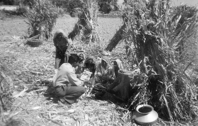 8th Bhikampura to Nilkanth Gadh (Rajasthan) December,2001