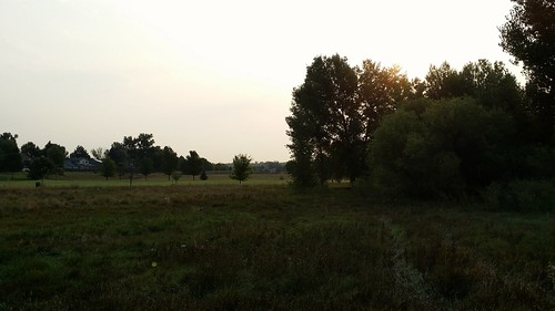 #tommw 52F mostly cloudy. Calm