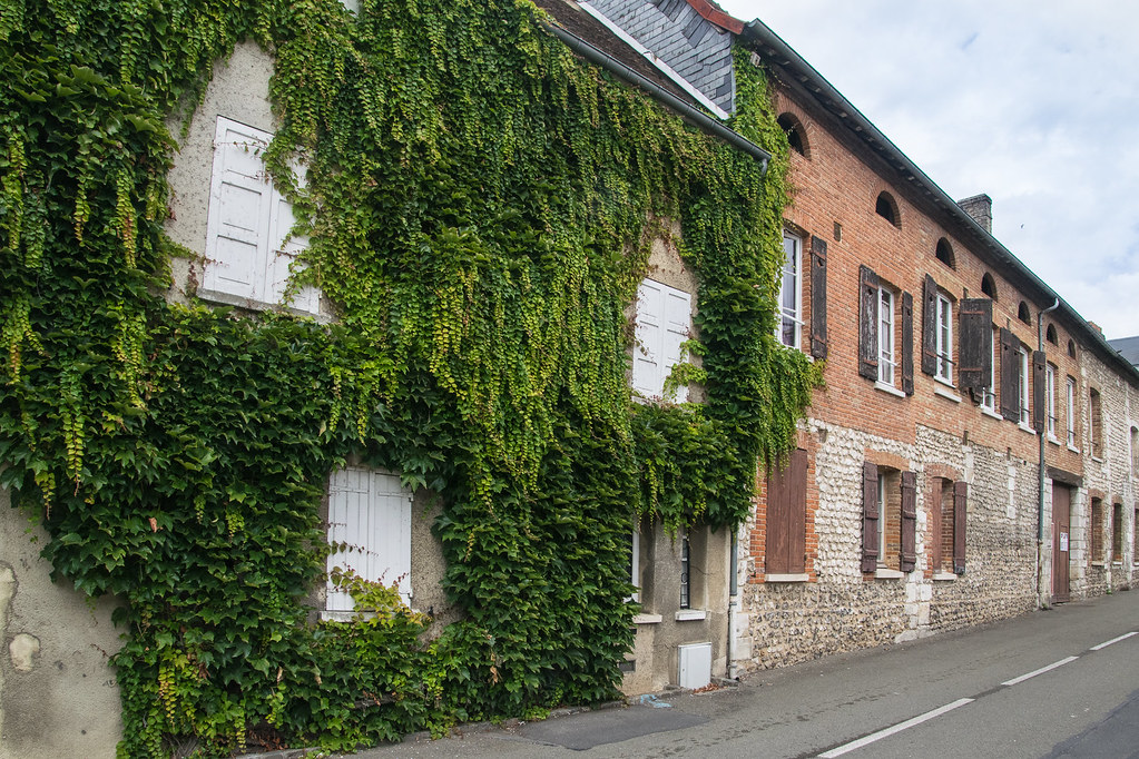 Noyers - France
