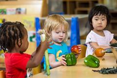 2017 - September - HDFS - Fresh Vegetables in the Child Development Lab School-60.jpg
