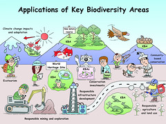 Applications of Key Biodiversity Areas