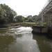 East Farleigh weir and fish pass