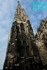 Catedral de San Esteban, Stephansplatz,  (Viena / Austria)