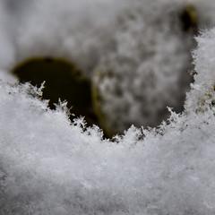 Macro Close-up of Snow
