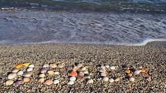 Inscription the beach from shells.