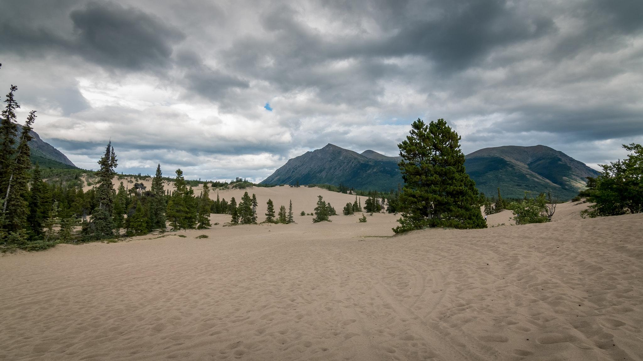 Carcross - Yukon - [Canada]