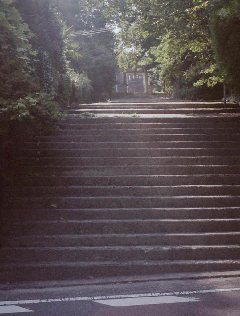 color-19821-2.jpg
