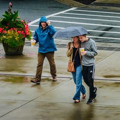 P1140057 Rainy Day Walkers