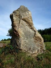 L'alignement de menhirs de la Bouaderie près de Gosné - Ille-et-Vilaine - Septembre 2017 - 09 - Photo of Liffré
