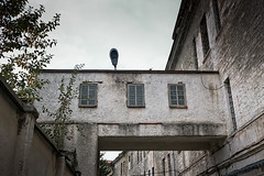 Lamp At The Prison Roof