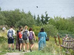 Folk & Fiddle:  Cape Breton Global Field Studies