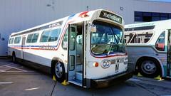 WMATA Metrobus GMC Fishbowls #1461