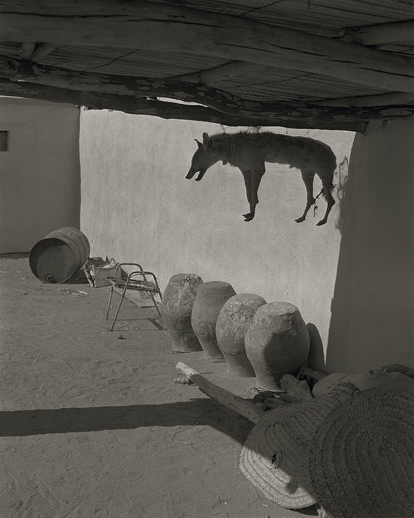 Bilad es Sudan © Claude Iverné/Elnour