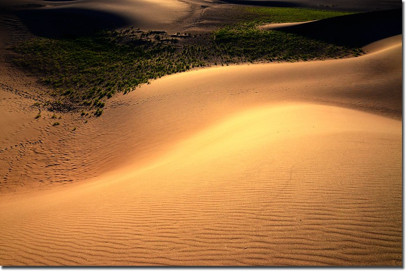Sunrise at Great Sand Dunes National Park (14)