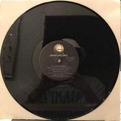 THE LARGE PROFESSOR:THE MAD SCIENTIST(RECORD SIDE-B)
