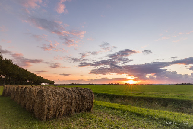 Bales of hay in, Canon EOS 5D MARK IV, Canon EF 16-35mm f/4L IS USM