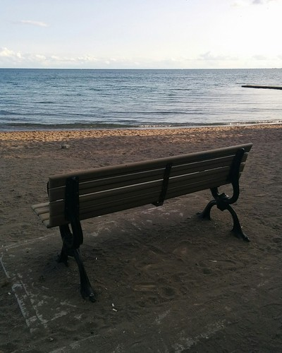Well-positioned bench #toronto #lakeontario #beaches #balmybeach #bench