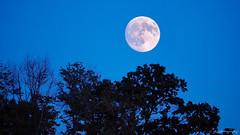 Moonrise of (almost) Full moon - September 2017