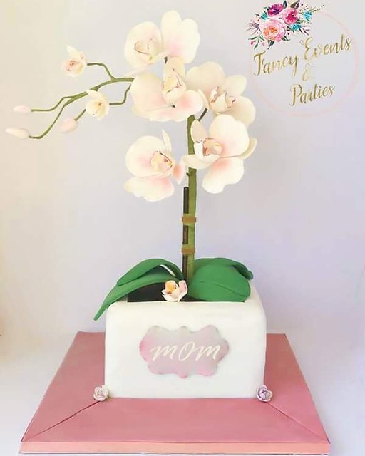 Cake by Fancy Events & Parties