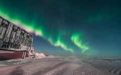 Red Ending Auroras