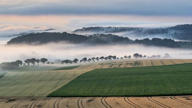 *Sommer im Tal der Morgennebel II*