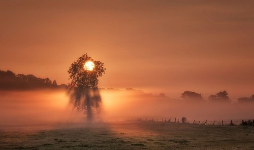 sunrise misty mist silhouette rays rural leicestershire shepshed atmospheric moody golden commute morningglory landscapephotography explorenumber1 explore explored