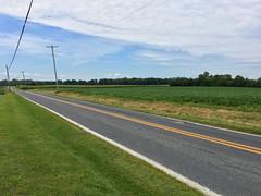 Willard Road