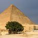 Small photo of Giza