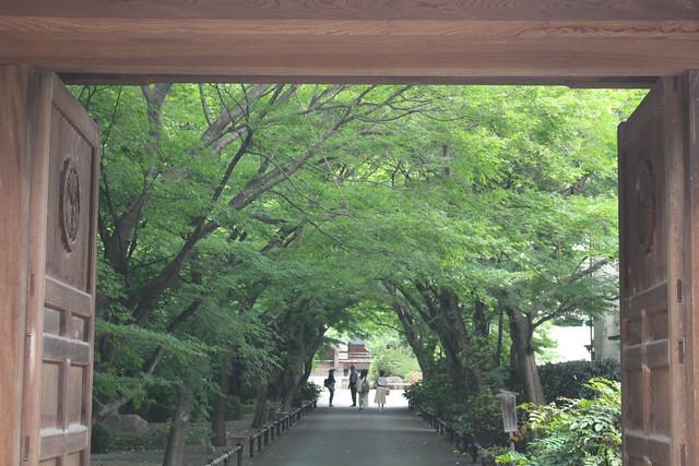 mabashiinari2034