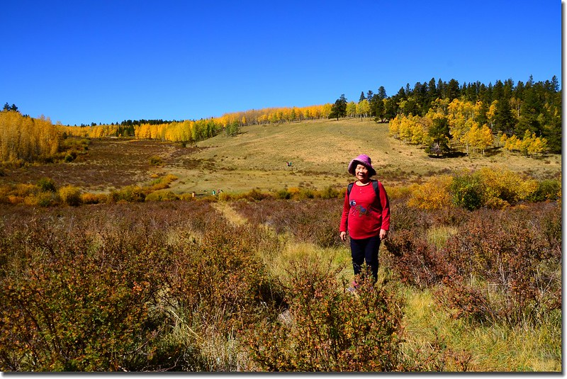 Fall colors, Kenosha Pass  (14)