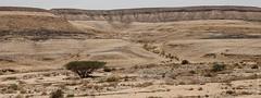 Israel-Negev-39544_20140422_GK.jpg