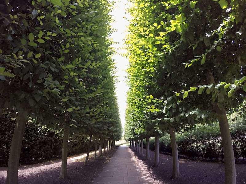 Kew Gardens in London, UK