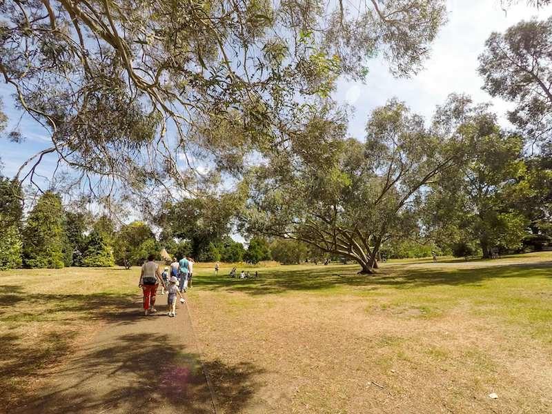 Walking the paths through sun at Kew Gardens