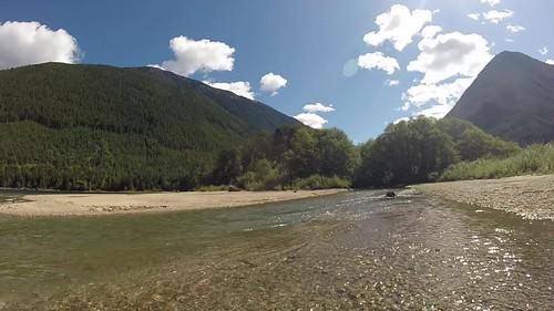 Kokanee Spawner, Chilliwack Lake BC