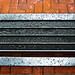 Wet Sidewalk Bench