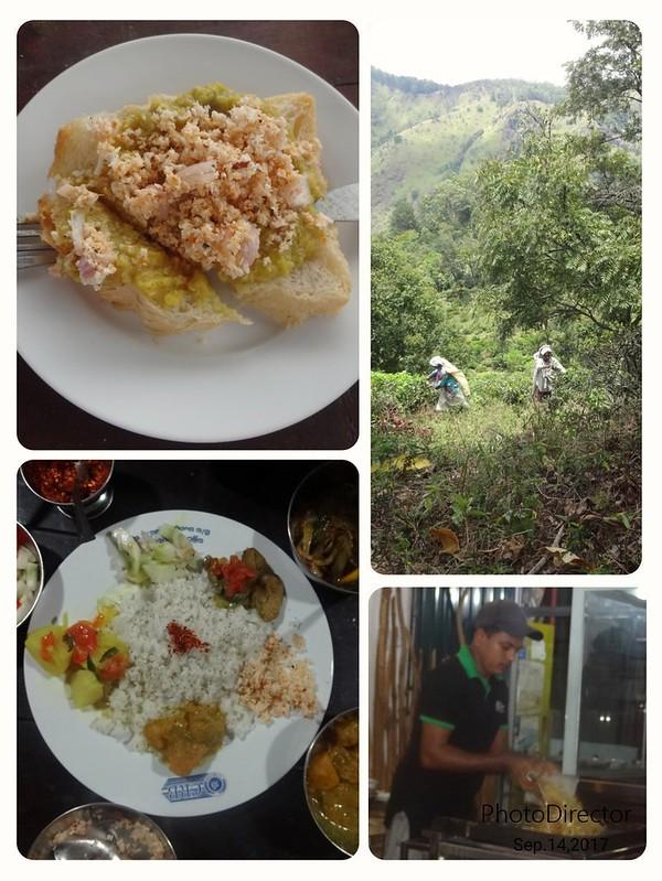 Sri Lanka gastronomie